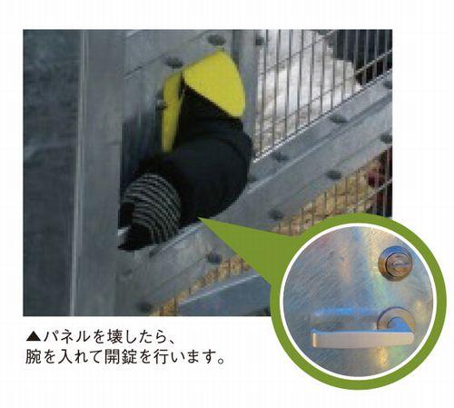 fit-P016-たしかめ隊4
